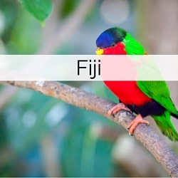Information on getting married in Fiji