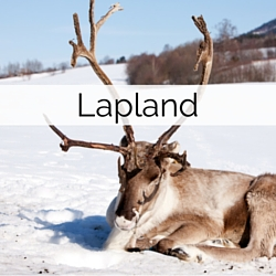 Information on getting married in Lapland