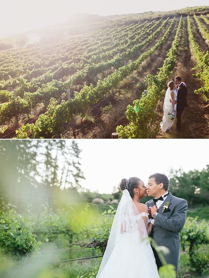 Destination Wedding in South Africa Mini Guide by Event Affairs - Winelands - photography Gavin Casey / Vivid Blue