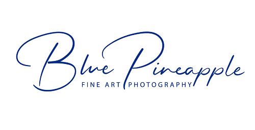 Blue Pineapple Fine Art Photography - Creative Abstract Photography for your Destination Wedding member of the Destination Wedding Directory by Weddings Abroad Guide