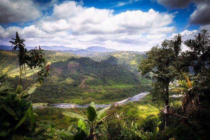 Michaela & Edward's Ecuador Cloud Forest Elopement - Planned by Etica Events - Photography by Ernesto Jun Santos