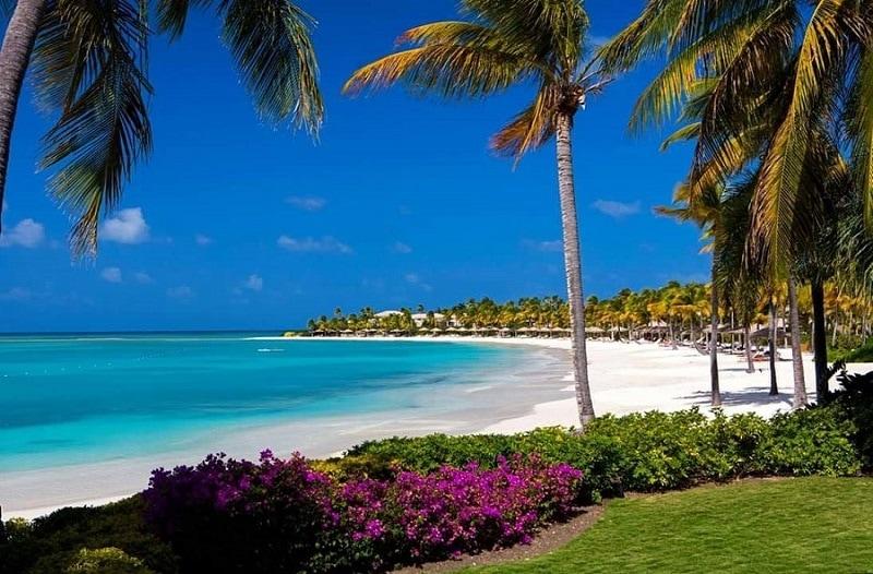 Caribbean Wedding and Honeymoon Packages