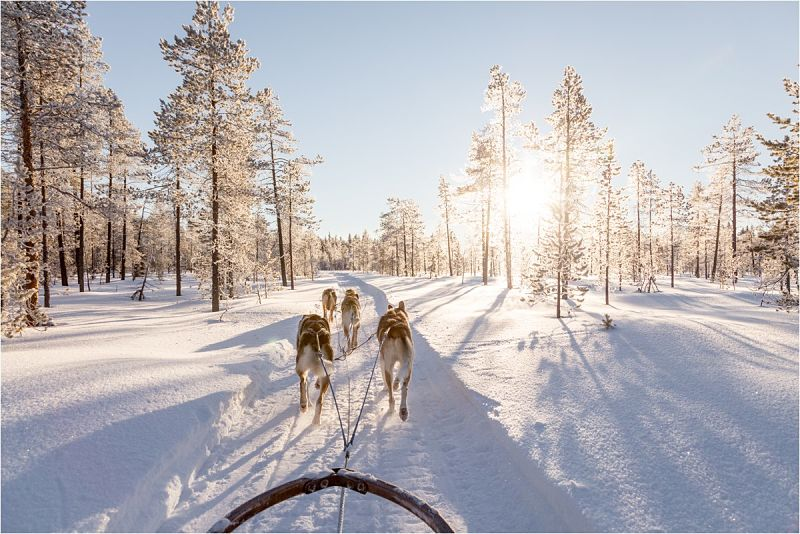 Guide to Getting Married in Lapland // Wild Connections Photography